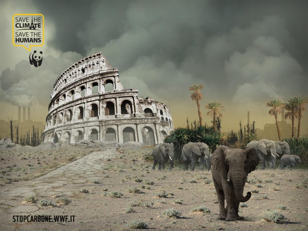 roma WEB link ld